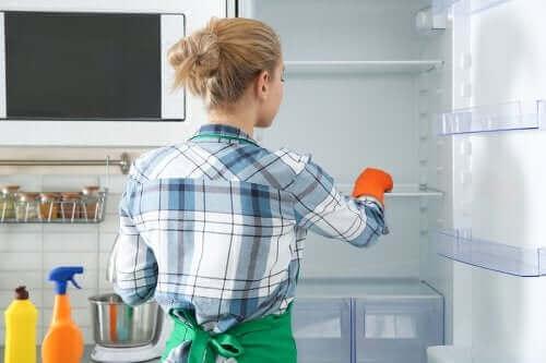 تنظيف الثلاجة - اكتشف معنا وسائل فعالة وصديقة للبيئة تساعدك