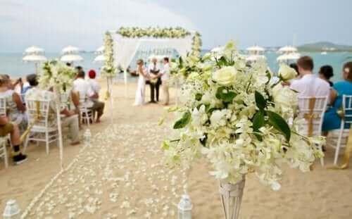 حفل زفاف سريع