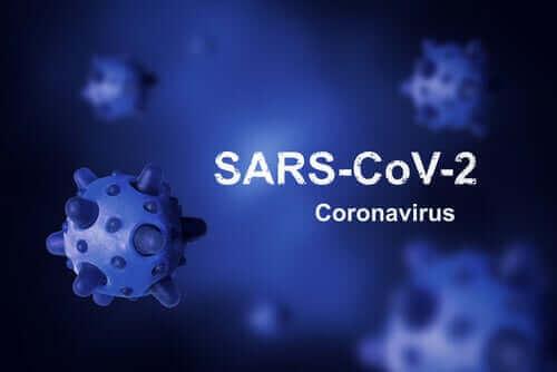 ما هو أصل فيروس كورونا ولماذا لم نتمكن من القضاء عليه حتى الآن؟