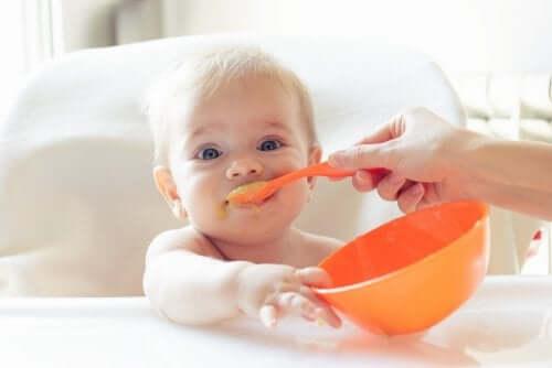 وجبات صحية – 10 خيارات لتحضير وجبات صحية للأطفال الصغار