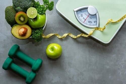 أطعمة تحتاج إلى استهلاكها إذا كنت رياضيًا تتبع حمية نباتية