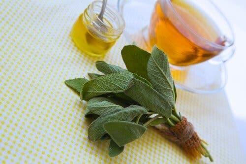 المريمية والعسل لعلاج الجروح والخدوش