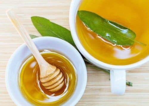 علاج العسل والمريمية