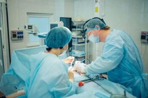 عملية جراحية لانفتال الخصية