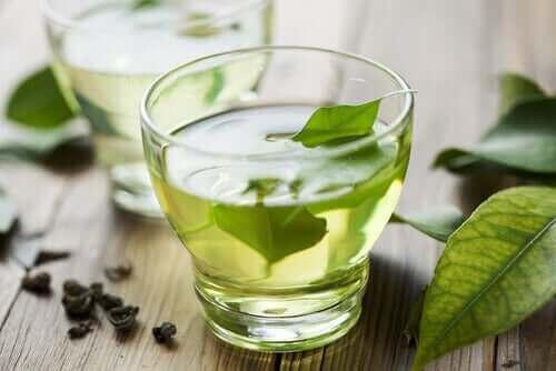 نباتات طبية - شاي أخضر