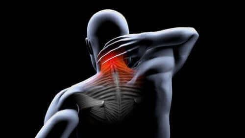 تقلص العضلات – الوقاية والعلاج