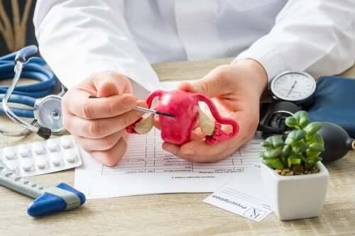 كل ما تحتاجين إلى معرفته عن سلائل الرحم