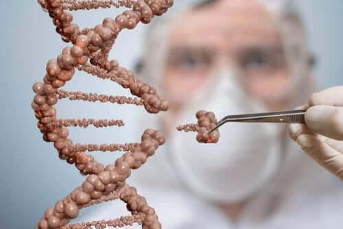 طبيب يجري زراعة - العلاج بالخلايا الجذعية