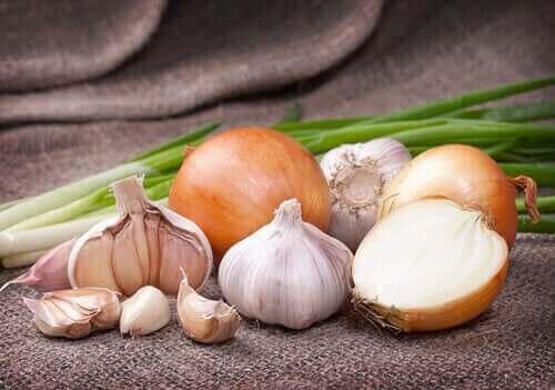 مجموعة من الخضروات البيضاء - لون الطعام