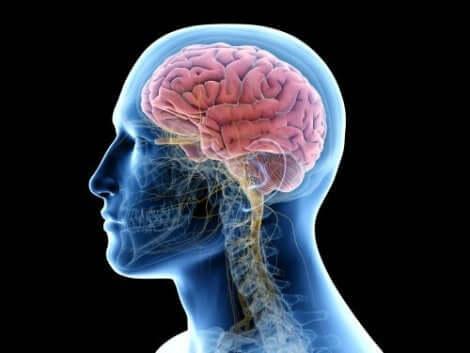 التهاب أنسجة المخ
