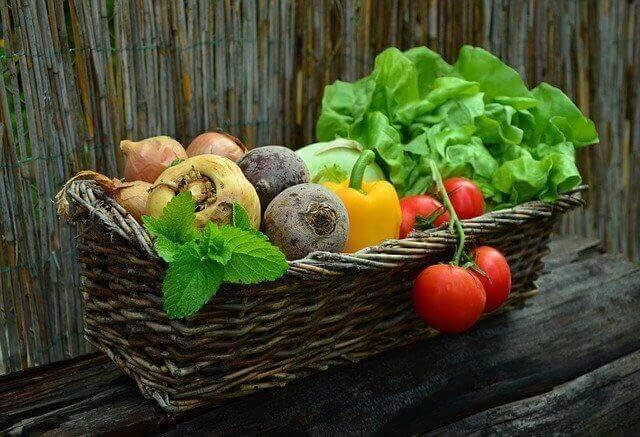 النظام الغذائي المناسب للأفراد المصابين بمرض السرطان