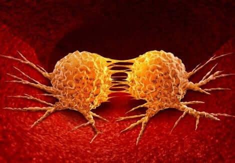 كيفية تطور السرطان