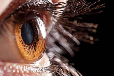 صورة مقربة للعين - جفاف العين
