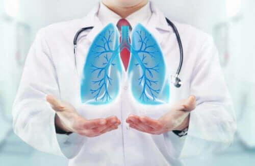 وظيفة التنفس