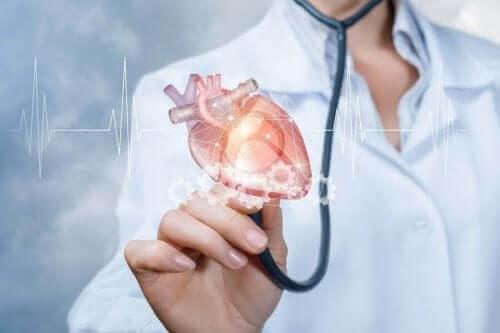 الماتشا وصحة القلب