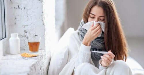 فوائد ثمر البيلسان الأسود في حالة الإنفلونزا
