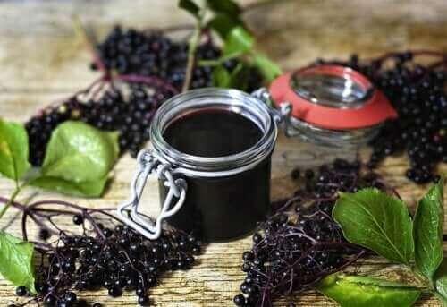 ثمر البيلسان الأسود - اكتشف معنا فوائده المثبتة علميًا