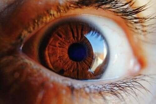 اكتشف معنا كيف تنظف العين نفسها