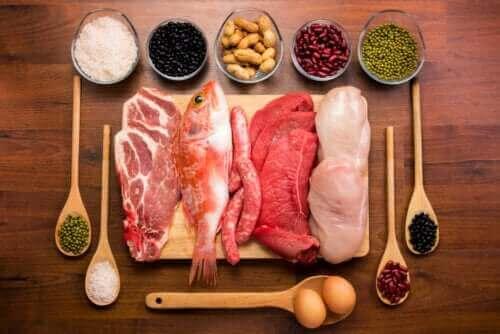وظائف البروتين في الجسم – اكتشفها جميعًا معنا في هذه المقالة
