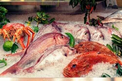 الزئبق في الأسماك - تأثيره على الصحة والأسماك التي يجب تجنبها