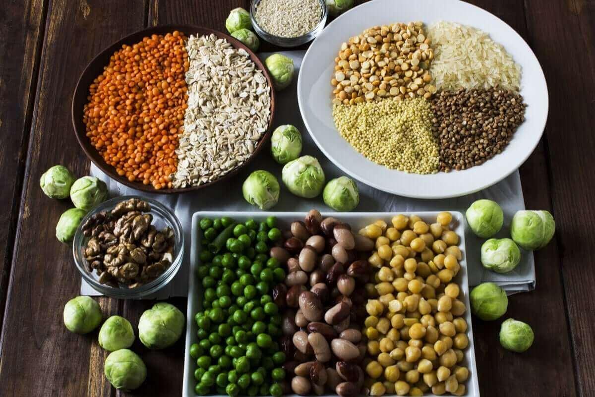 استهلاك البروتين النباتي