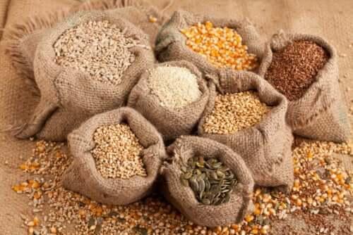 البذور والحبوب
