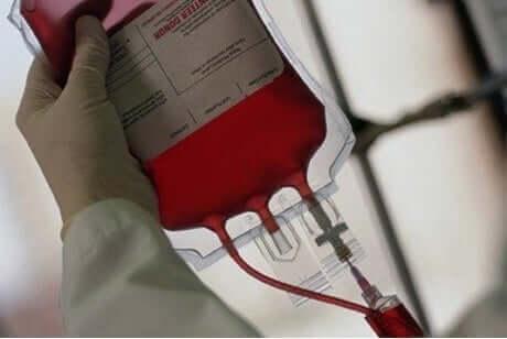 التبرع بالدم في فصل الصيف