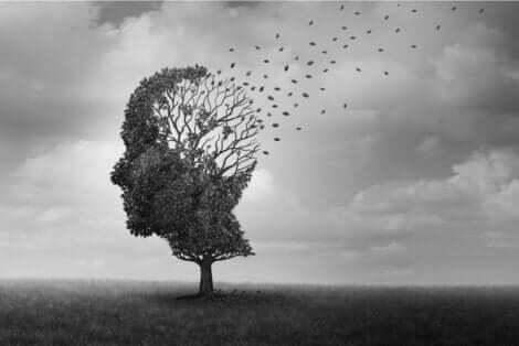 أنواع فقد الذاكرة وفقًا للمسبب