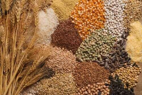 ثلاث نصائح لدمج البذور في نظامك الغذائي