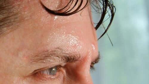 تأثيرات مستويات الرطوبة العالية على الجسم