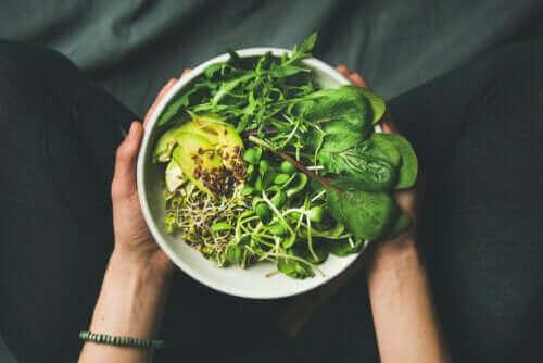 الاختلافات بين النباتيين والخضريين وشبه النباتيين
