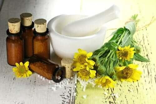 زهرة العطاس: الفوائد وموانع الاستخدام
