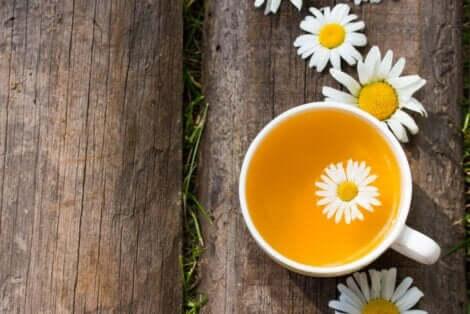 كوب من شاي الكاموميل