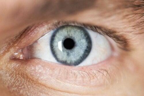 وصف وأسباب تقبض حدقة العين