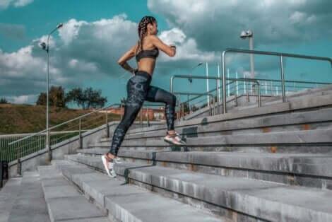 الاختلافات الرئيسية بين الهرولة والجري