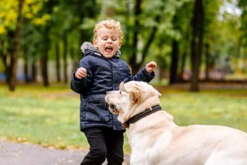 طفلي خائف من الحيوانات. ماذا علي أن أفعل؟