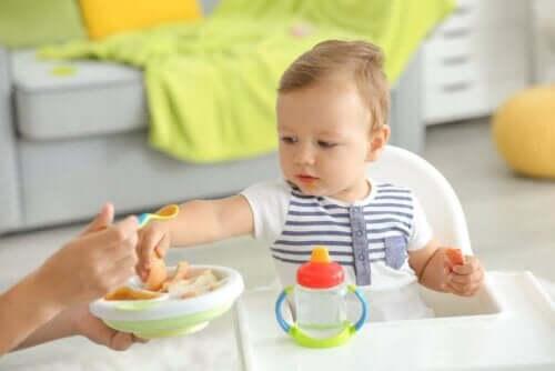 الأطعمة الصلبة للأطفال