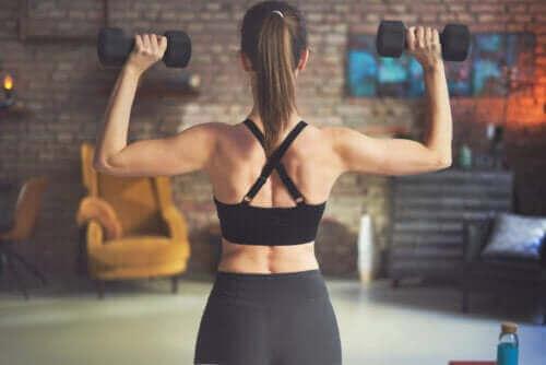 عضلات الظهر - أفضل التمارين باستعمال الأوزان لتعزيزها