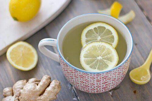 منقوع الفواكه بالماء - عصير الليمون