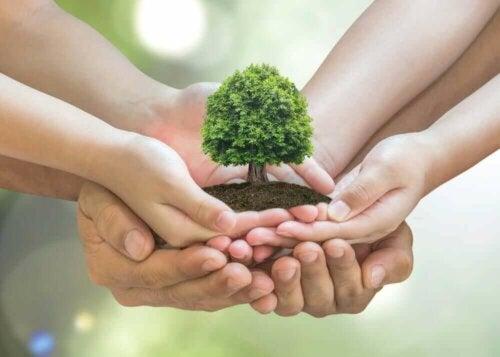10 نصائح للعناية بالبيئة في المنزل