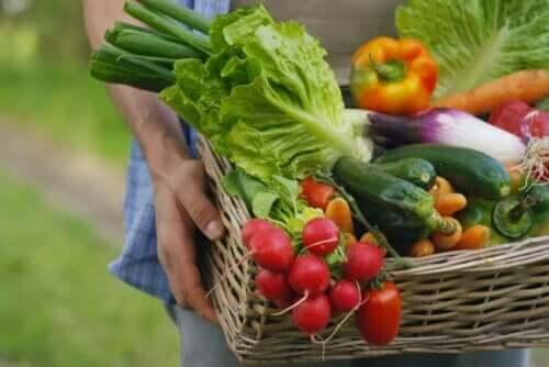 الخضروات من الأطعمة قليلة الصوديوم