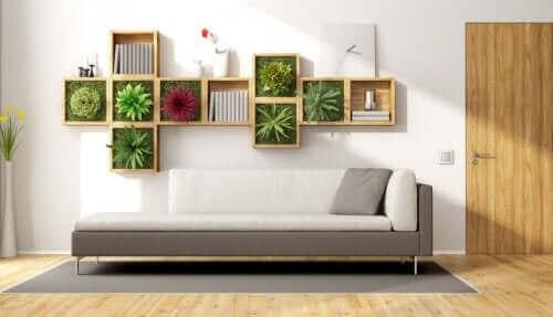 نباتات منزلية - الديكور الصديق للبيئة