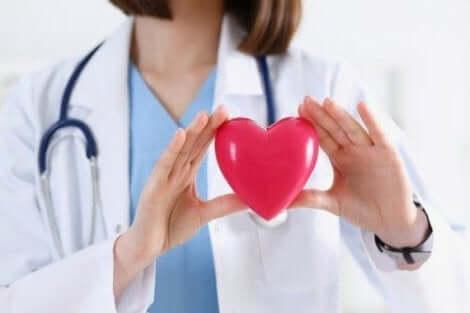 الأفوكادو وصحة القلب