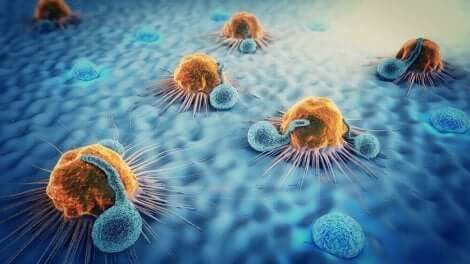 هجرة الخلايا السرطانية