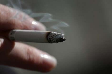 التدخين و ارتفاع الكوليسترول