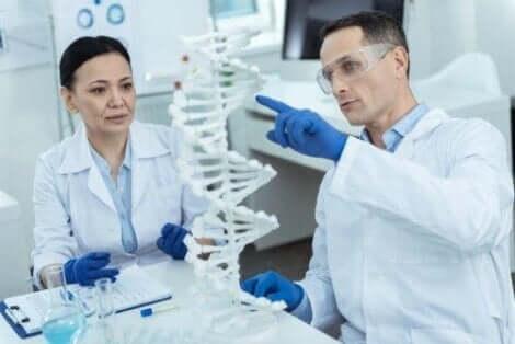 علماء يدرسون الجينات