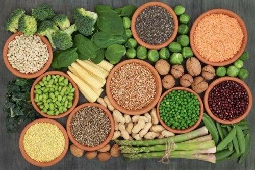 المصادر الرئيسية للبروتين في النظام الغذائي النباتي